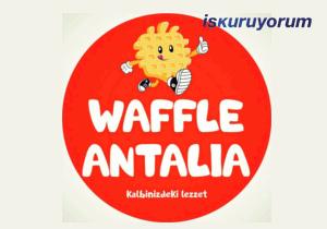Waffle Antalia Bayilik
