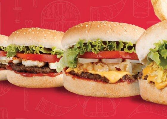 viking burger bayilik