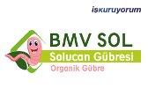 BMV-SOL Solucan